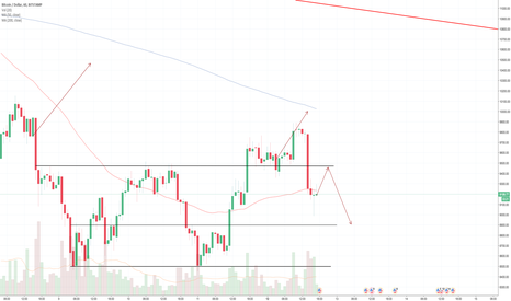 BTCUSD: BTC:USD 1 hour chart DAILY UPDATE (day 19)
