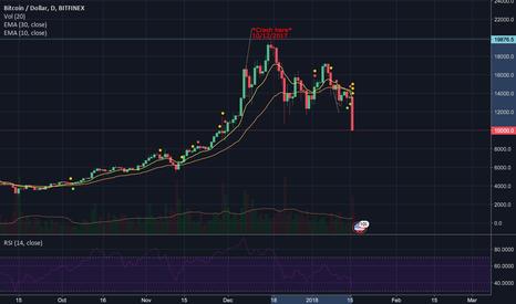 BTCUSD: The Bitcoin Crash