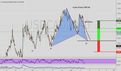 USDCAD: Potential Gartley Pattern USDCAD Long