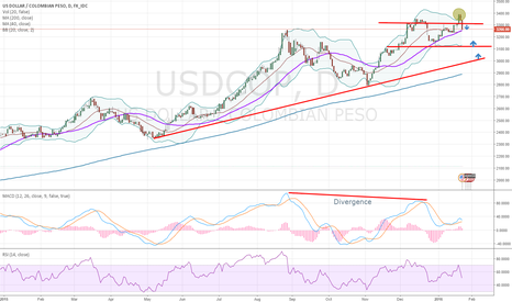 USDCOP: Possible correction in the USDCOP