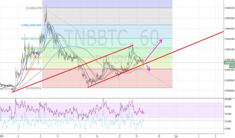 TNBBTC: TNBBTC Orta Vadeli Parite Analizi