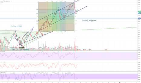 BTCUSD: BTC to remain bullish, Alts not so much