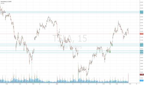 TSLA: TSLA Price levels