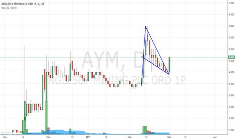 AYM: Buy the bull flag at AYM