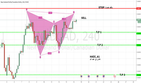 NZDCAD: SHORT FOR NZD/CAD