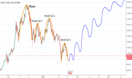 BTCUSD: BTC - Bitcoin chart, if we compare it with a Moon & 3 Dead Cats