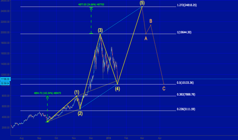 BTCUSD: Bitcoin 5th Wave - Feb/March