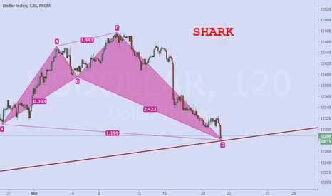 USDOLLAR: shark pattern