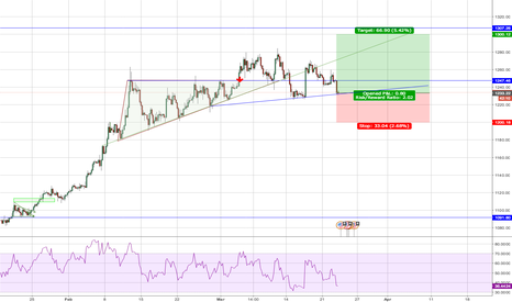 XAUUSD: Gold support at 1230, test of year high?