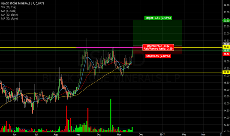 BSM: BSM Looking for New High