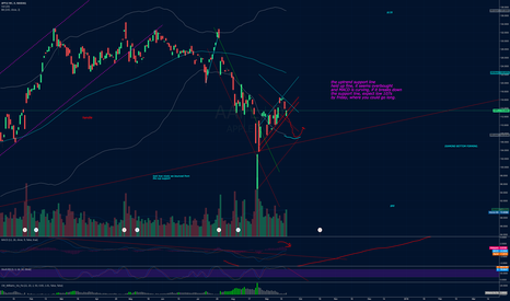 AAPL: AAPL Updated chart.