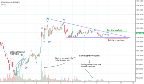 BCHUSD: Something Big is Going to Happen to Bitcoin Cash