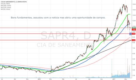 SAPR4: SAPR4 Diario