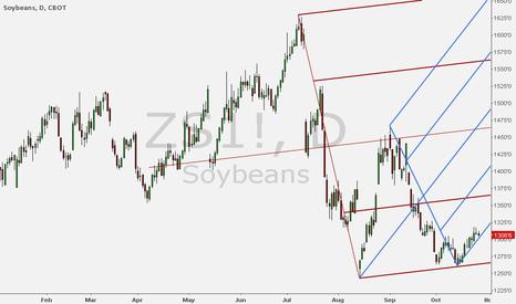 ZS1!: Long Soyobean