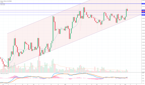 XMRBTC: XMR BTC, prepare yourself to shorter or keep