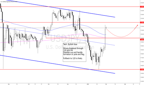 USDJPY: 2016-01-31_sun_Expecting a pullback after a buy climax