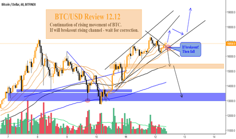 BTCUSD: BTC/USD Review 12.12