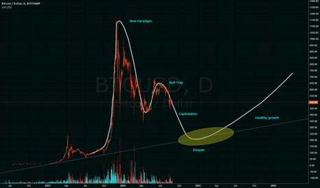 BTCUSD: Perfect Bubble in the making?