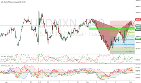 USDMXN: Perfect Gartley Pattern