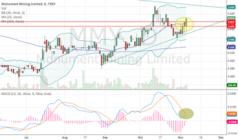 MMY: Expect steady movement upwards....