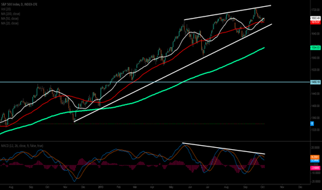 SPX: Why 4Q 2013 is Going to Get Ugly