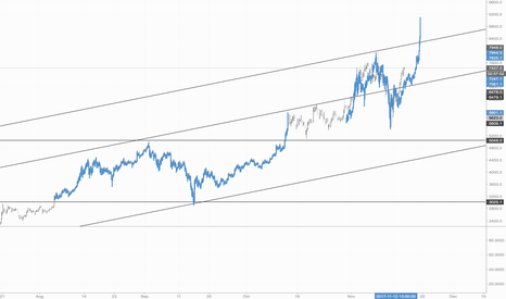 XBTUSD: Bitcoin: History Repeating Itself, but much faster cycles?