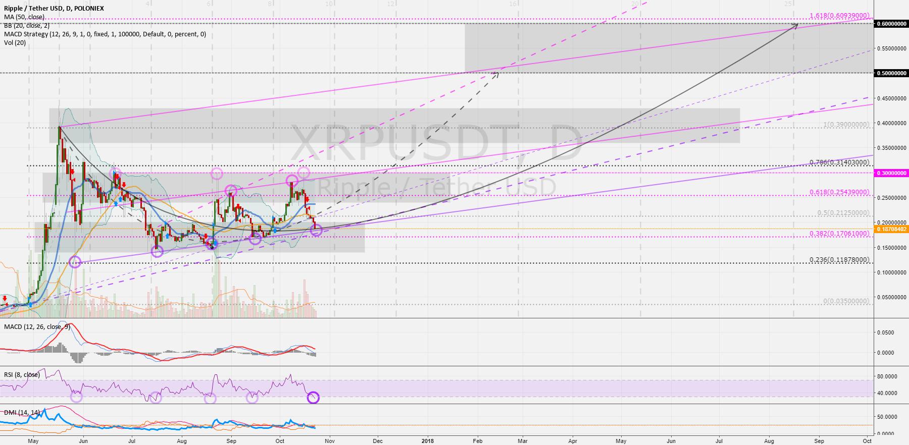 XRPUSD - RippleUSD (1D): The next upswing could be  > 0.3 USD