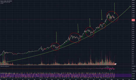 BTCUSD: Bitcoin log chart - history repeats