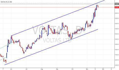VOLTAS: Voltas short - evening star
