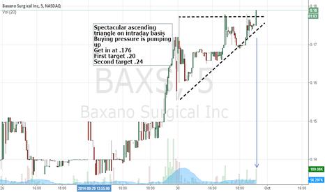 BAXS: REALTIME SWING BAXS