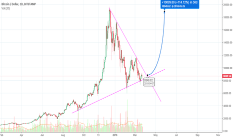 BTCUSD: Here's Looking at You, Kid (BTC Next FOMO Cycle)