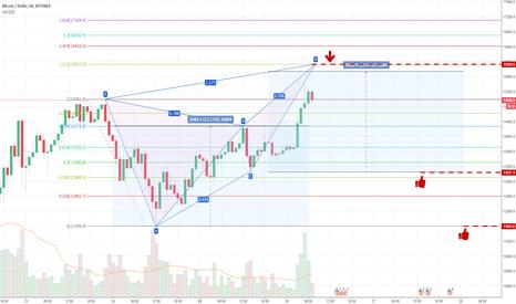 BTCUSD: BTC/USD Butterfly pattern drawing