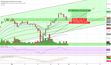 UNH: Potential Reversal Zone