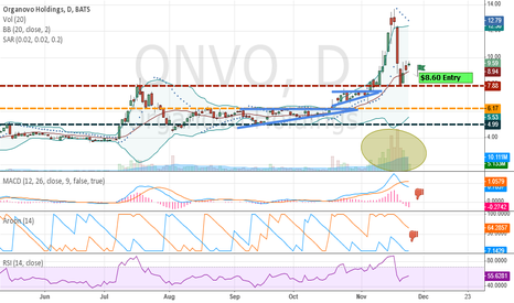 ONVO: ONVO - up, down, sideways?