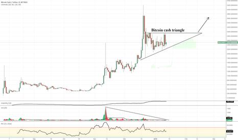 BCCUSDT: Bitcoin cash (LONG) bch aka bcc