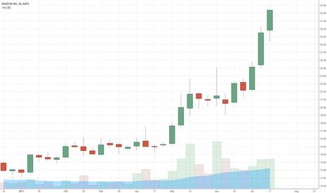 BZUN: IPO Stock Secrets