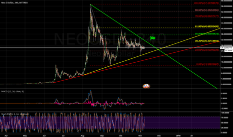NEOUSD: NEO DNA! Great upside potential