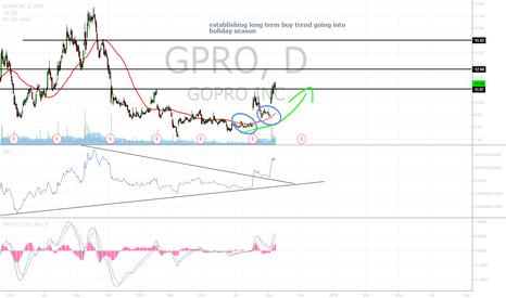 GPRO: GPRO looking to establish buy footing