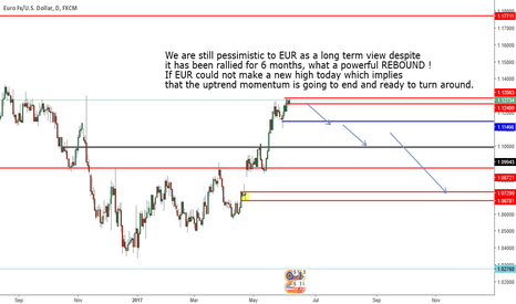 EURUSD: pessimistic to EUR as a long term view