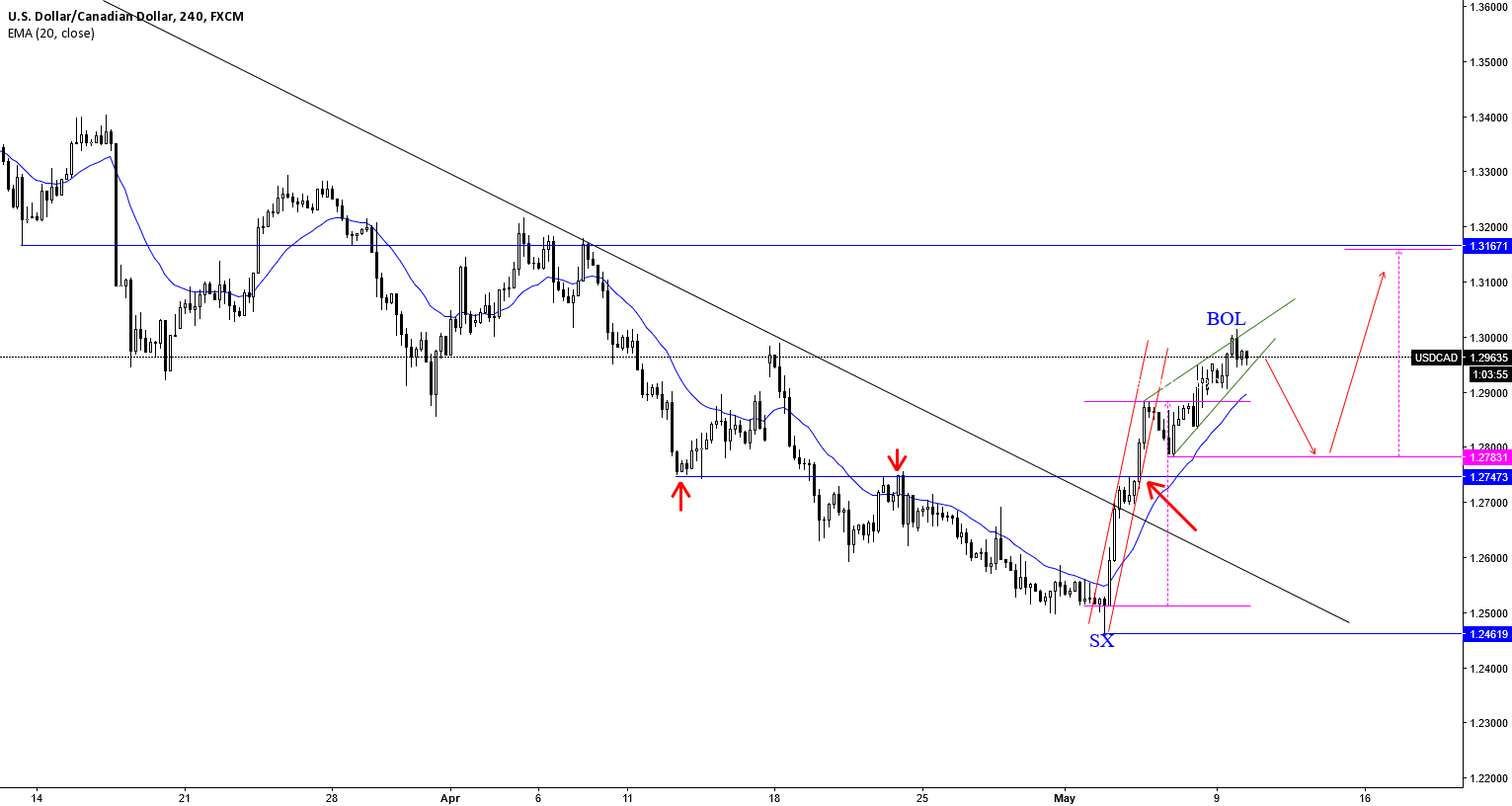USDCAD: A BEAR FLAG TO REVERSE THE INITITAL RALLY???