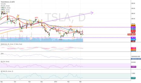 TSLA: Tesla tunnel