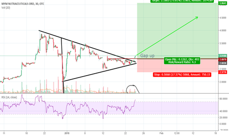 MYMMF: MYMMF pennant breakout with gap up confirmation