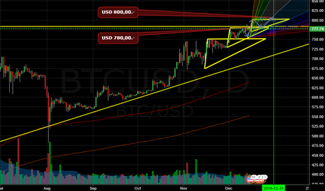 BTCUSD: THE FINALLY PRICE TARGET OF BTC 2016! and happy trading for all!