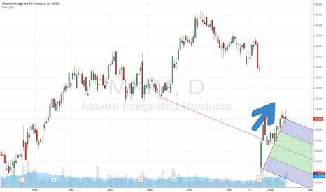 MXIM: Maxim: we bet on the buyback