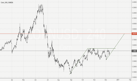 CORNUSD: Corn continuation pattern in play. Long idea.