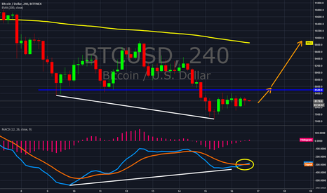 BTCUSD: BTC 16 March Update We are turning up!!!