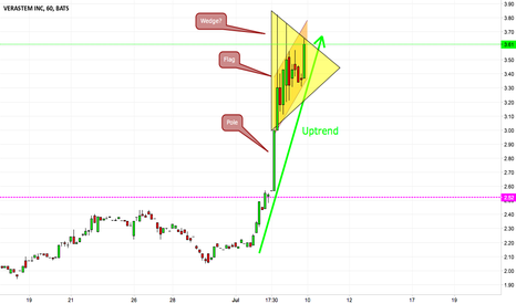 VSTM: Flag or Wedge? Can this rally continue?