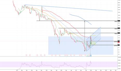 NETE: NETE the volatile stock