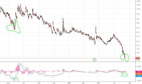 IMNP: Bottom feeder buy IMNP