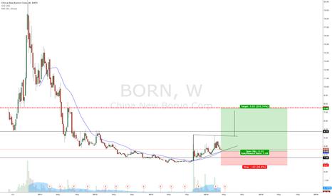 BORN: China BORN, huge potential upside.